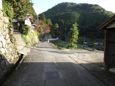 20121027hike_9