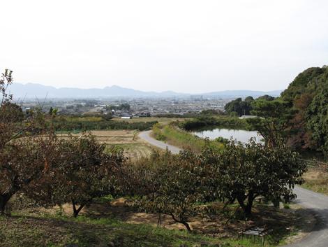 20121104hike_330