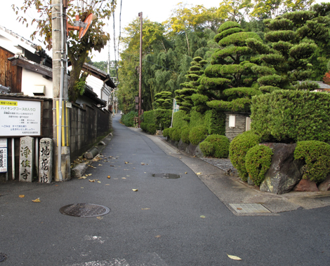 20121118hike_8