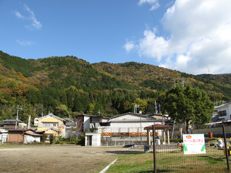 20121118hike_359