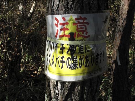 20121125hike_184