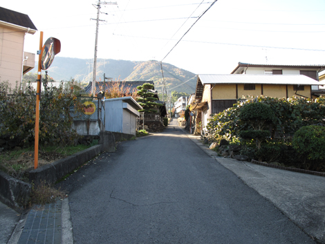 20121125hike_20