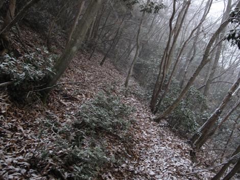 20121208hike_76