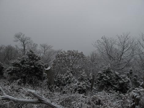 20121208hike_92