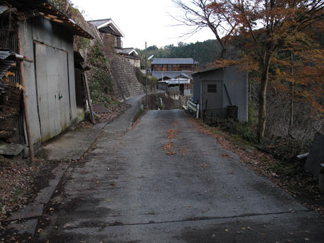 20121216hike_357