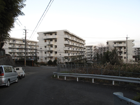 20121216hike_375