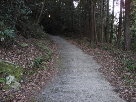 20130119hike_12