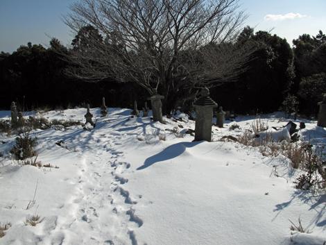 20130119hike_161