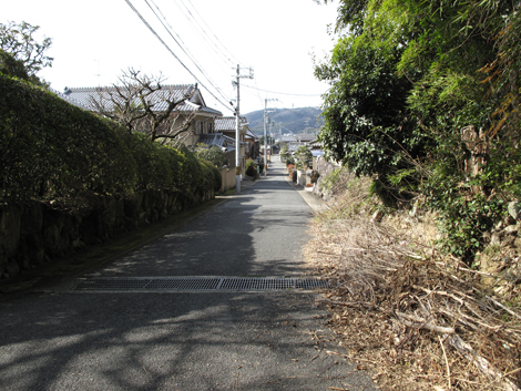 20130203hike_214