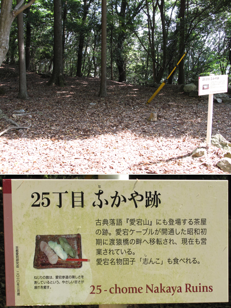 20130429hike_46