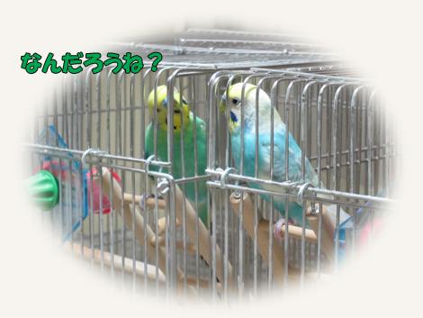 20130927_6