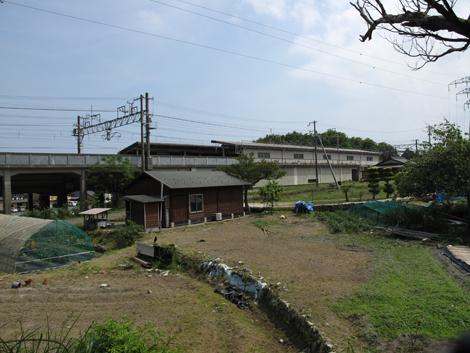 20130525hike_369