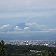 鎌倉アルプス・勝上嶽展望台からの夏の富士山