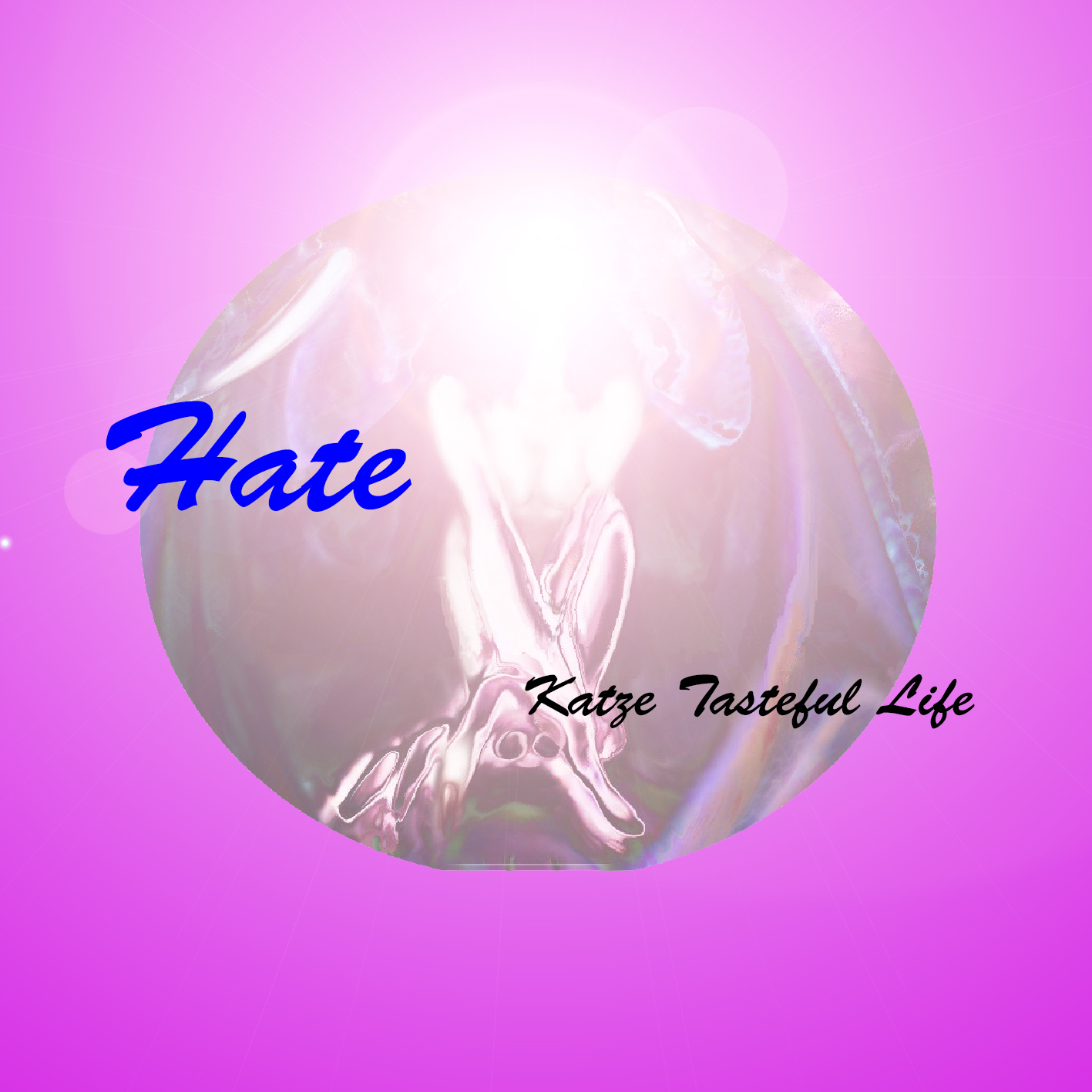 Hate_cd_book_front_katze