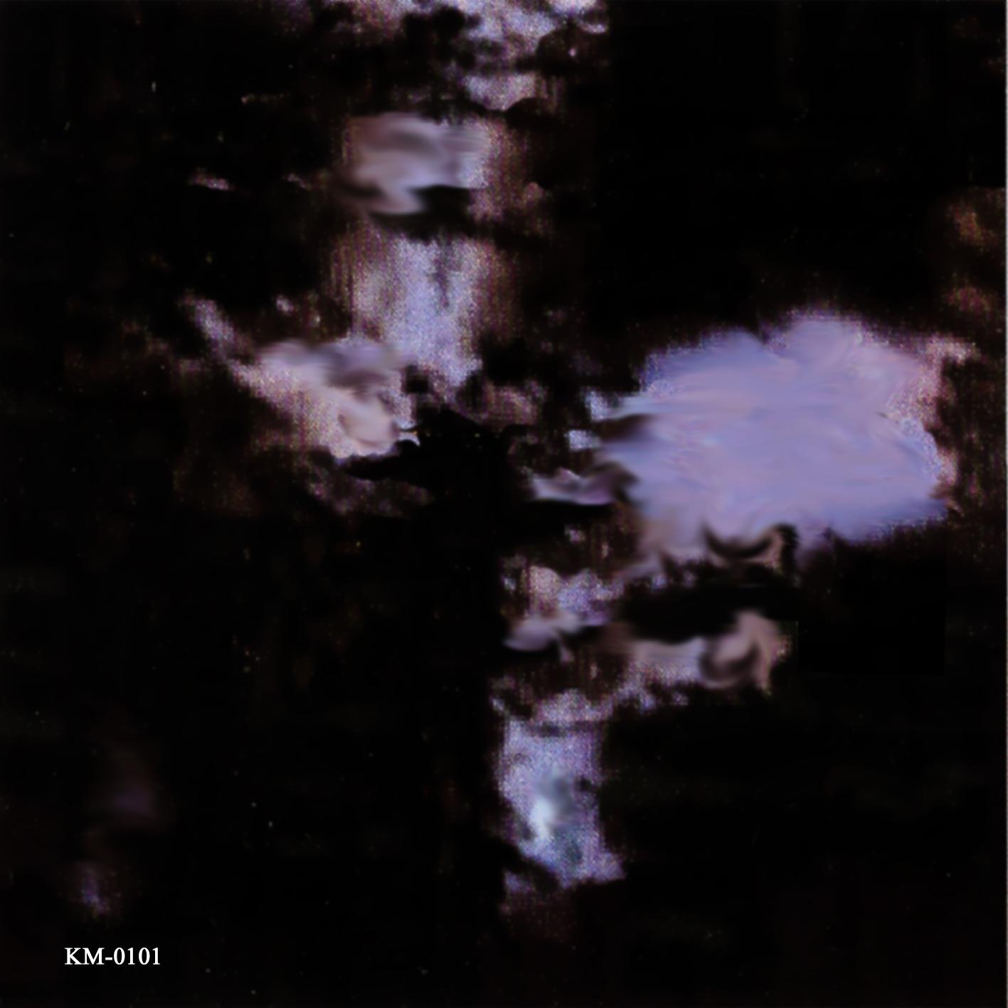 Pain_cd_book_back_katze