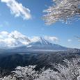 菰釣山山頂から見た富士山